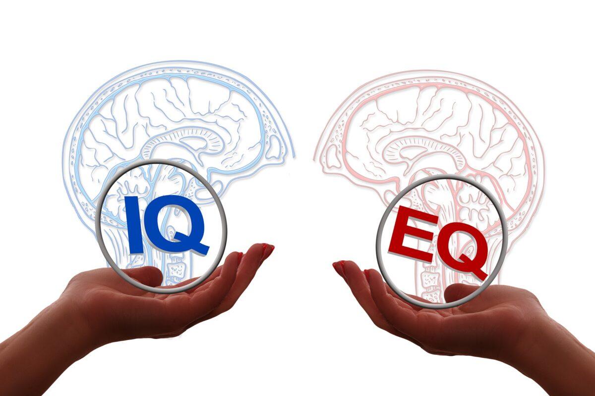 iqとeqの相関関係